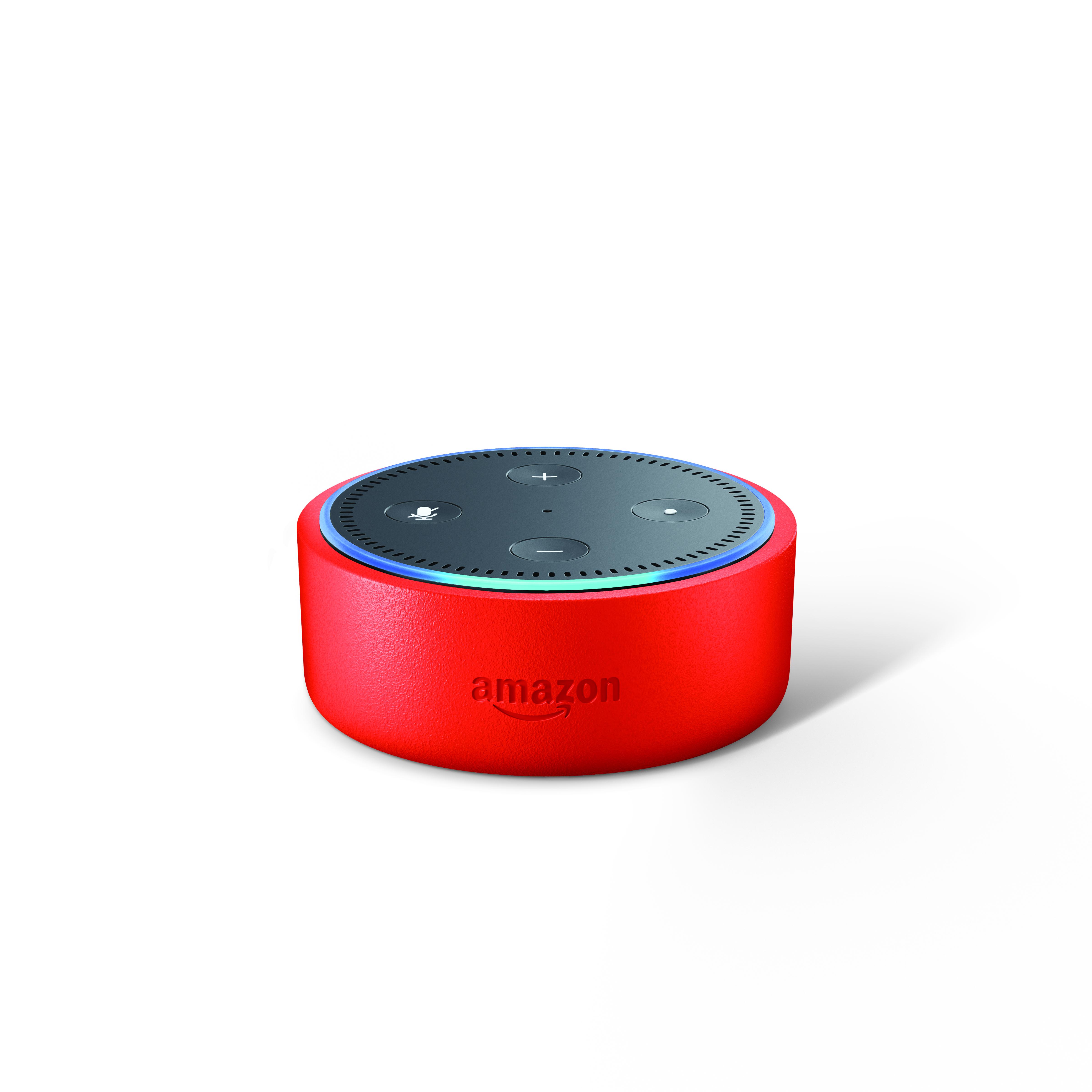 Colorful Echo Dot Kids Edition