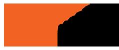PDV Logo